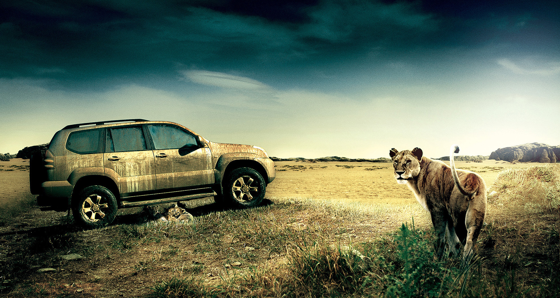 Toyota Land Cruiser for Olympic DDB