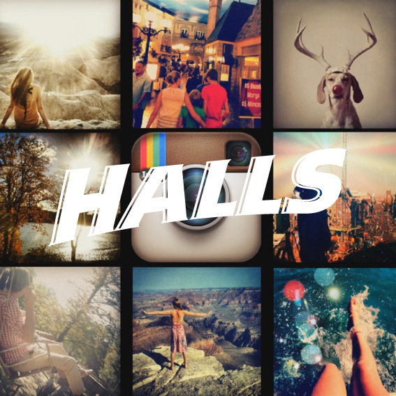 Halls Colors - Case Study