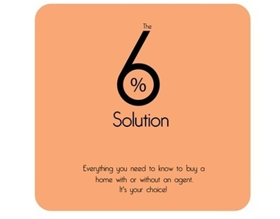 Book cover - The 6% solution Sissy Lappin