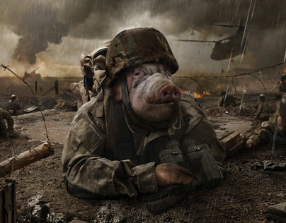 Top Gut System: Soldiers Pig