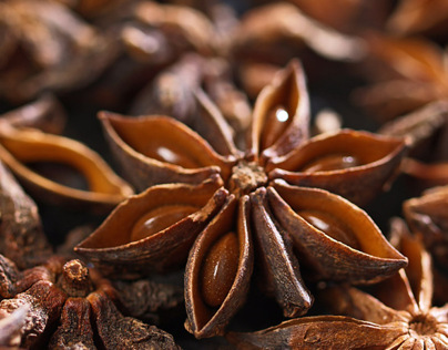 Star Anise and Depth of Field
