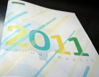 New Dawn Enterprises, 2011 Annual Report
