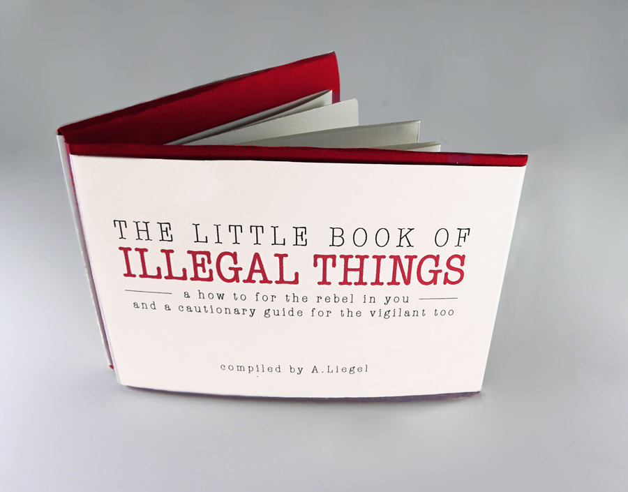 The Little Book of Illegal Things