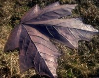 Large copper leaves - Hammered metal sculpture