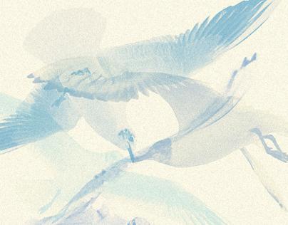Seagulls / digital collage artwork