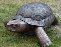 Tortoise Sculpture Photo Documentary