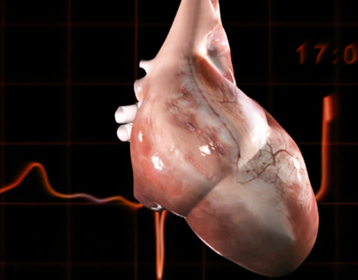 Medical_Animation: Human_Heart