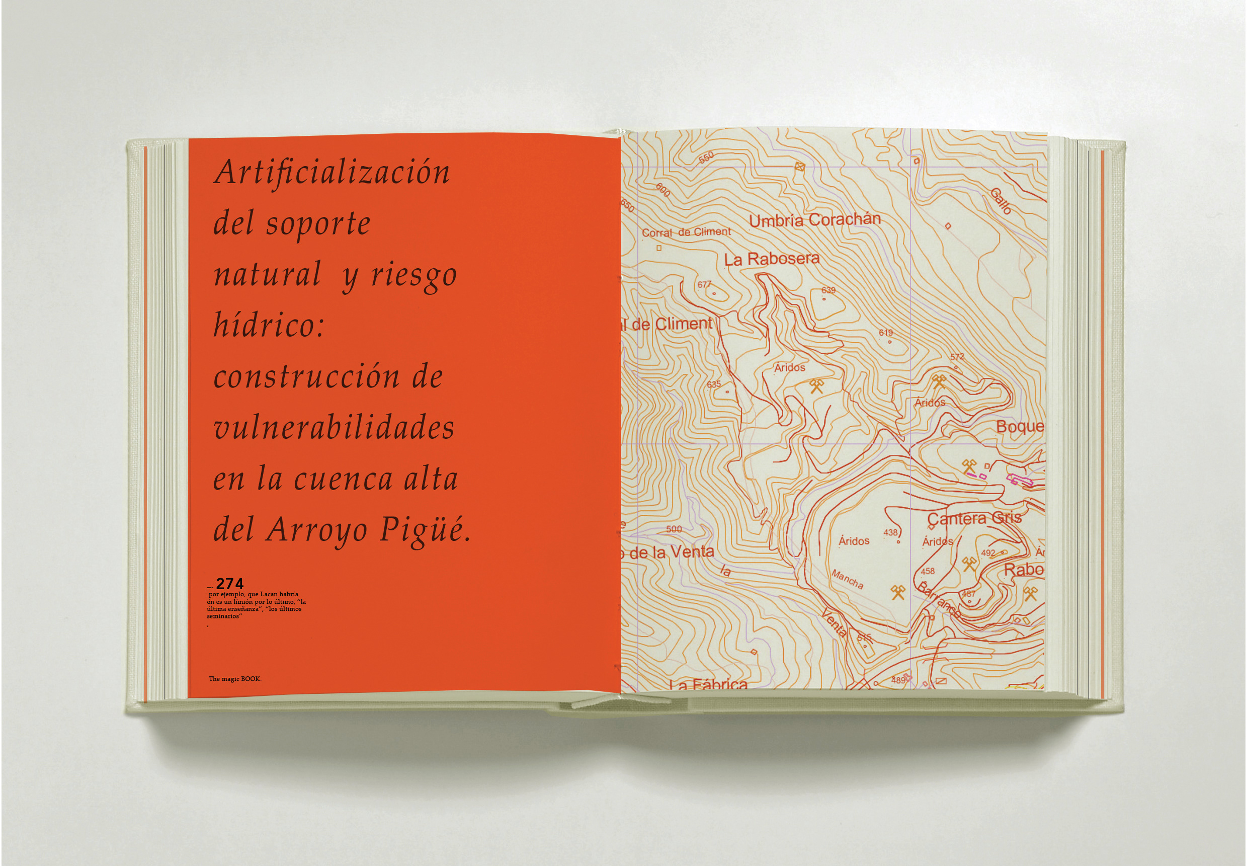 Thesis book, Roca, 2012