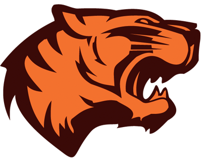 Vector Tiger Face