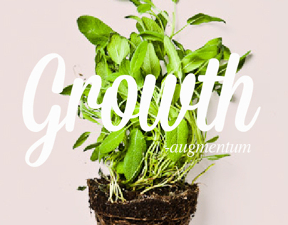Growth - augmentum Exhibition