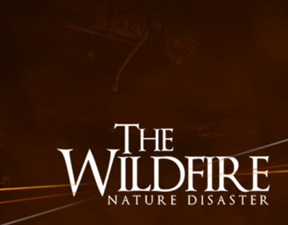 The Wildfire Nature Disaster