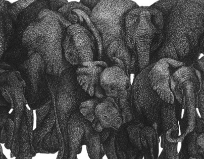 How To Round Up A Herd Of Elephants In A Day