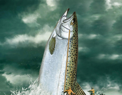 Fishermans Warehouse Salmon Poster
