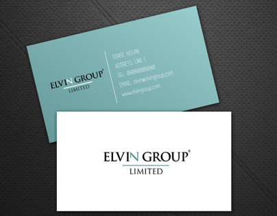 Elvin Group Limited