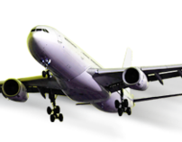 Web Design/Development International Air Travel