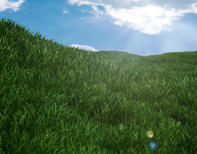 Realistic Grass and Ocean