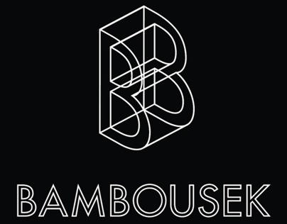 Bambousek Covers 2013