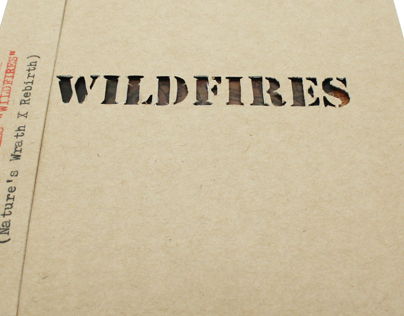 Earth beat: Wild fires CD packaging