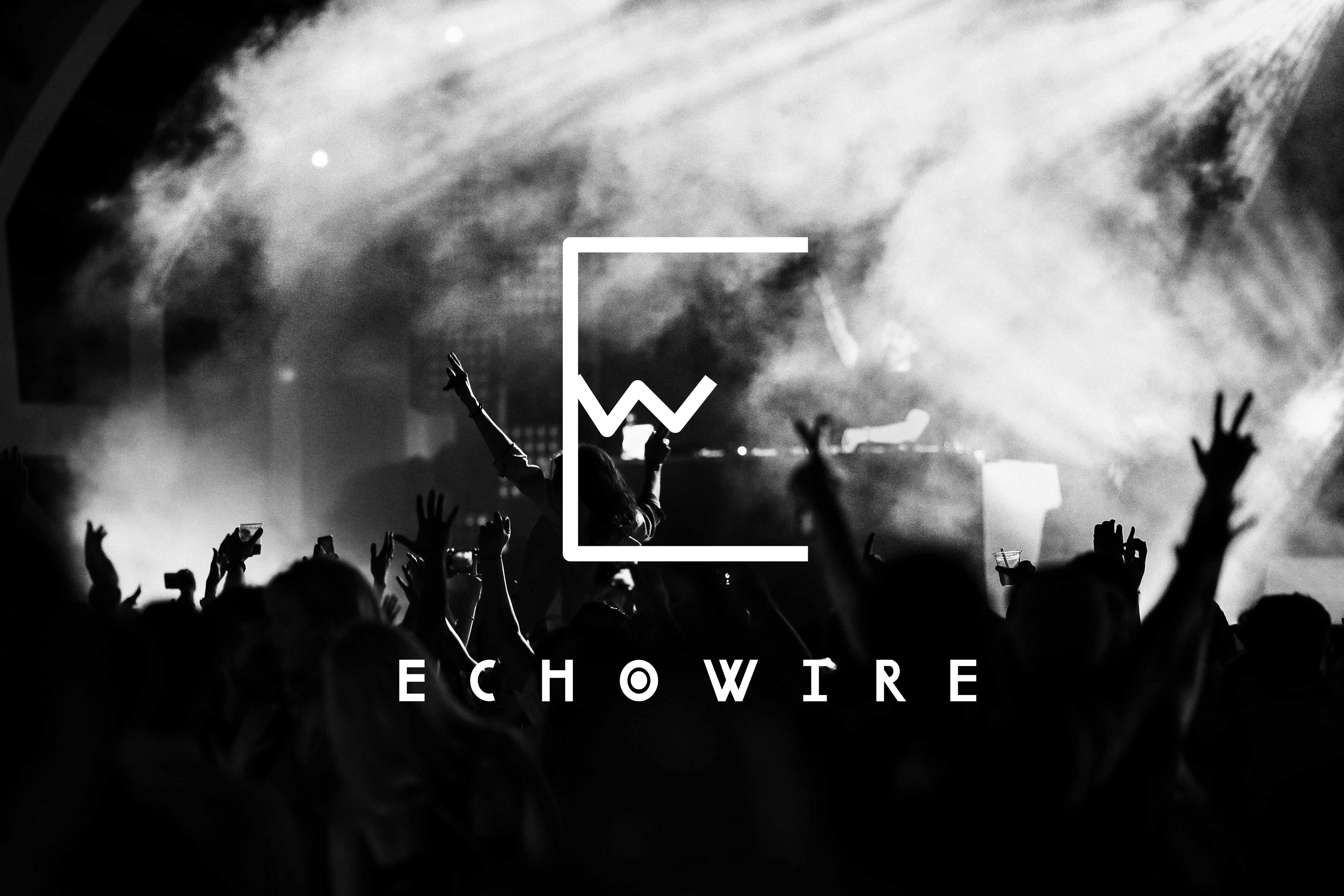 EchoWire - Branding
