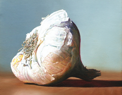 Garlic, 20 x 20 cm, oil on canvas