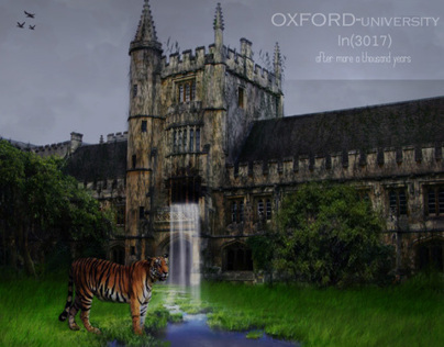 OXFORD-uni in3017