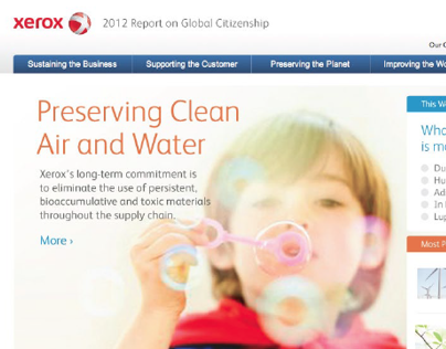 Annual Report Website Concept - Xerox