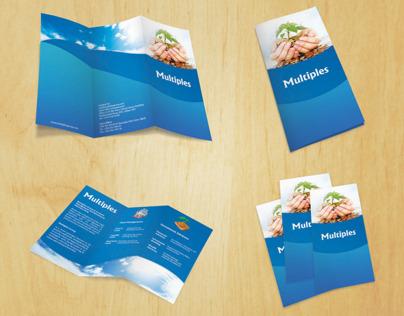 MultiPles Flyr Design