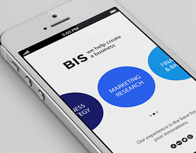 Mini app for BIS business company