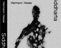 Covers and illustrations Hermann Hesse