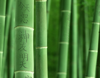 Poem  Bamboo Project