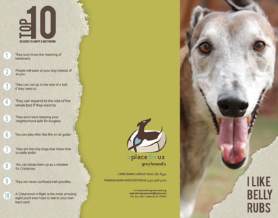 A Place For Us Greyhounds Brochure Design
