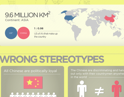 Fellow Chinese Student Infographic