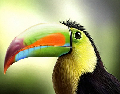 Tucano Digital Painting