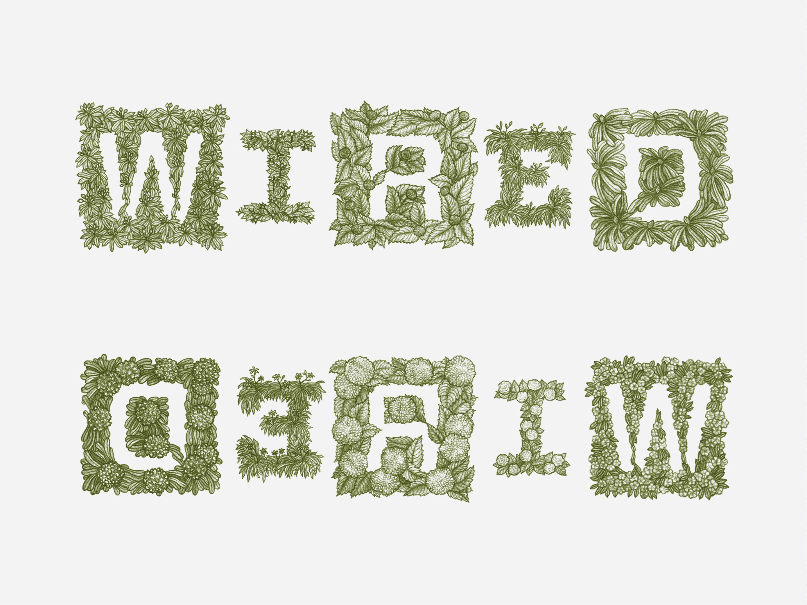 WIRED Magazine UK Lettering