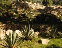 MEXICO - Historic Garden recovery at Monserrate, Sintra