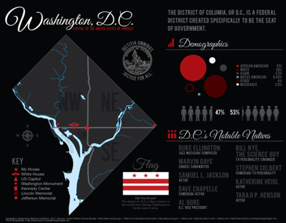 Washington D.C. Infographic