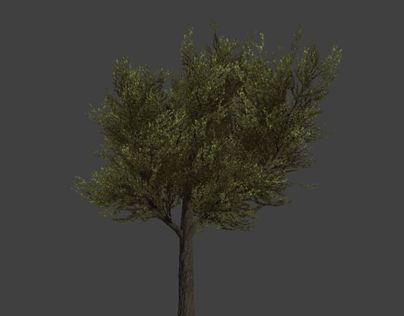 Foliage for games [WiP]