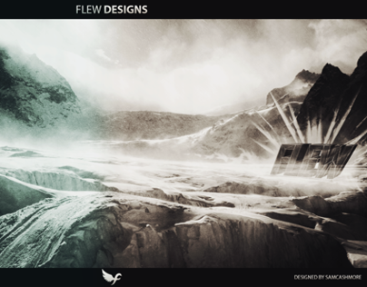 Flew Designs Contest Entry