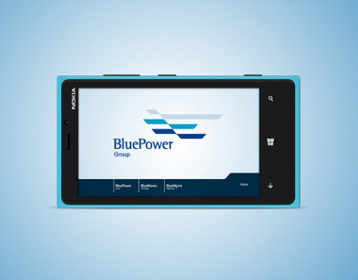 Blue Power Group / Web Site