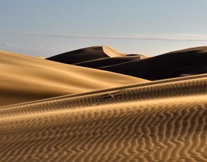 Alexandria Dunes, South Africa