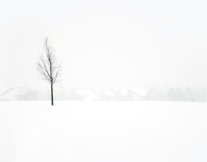 winter/white