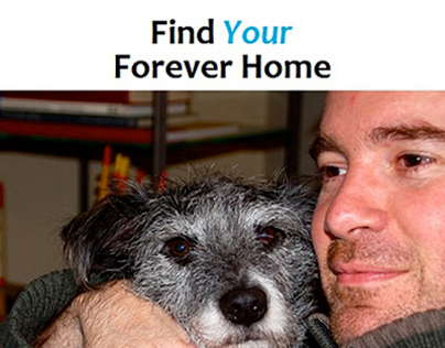 SLOGAN: Find YOUR Forever Home
