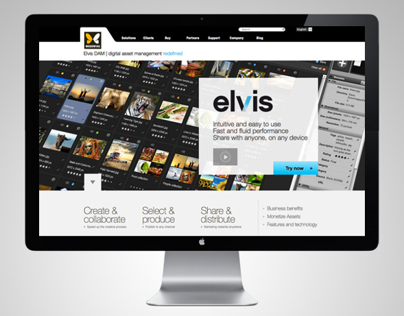 Elvis DAM _ Digital Asset Management