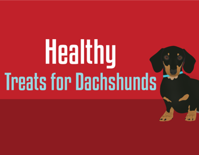 Healthy Treats for Dachshunds Blog