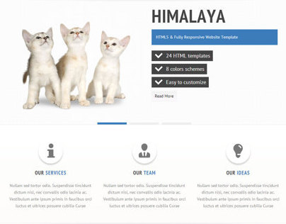 Himalaya - HTML5 / CSS3 Website Template