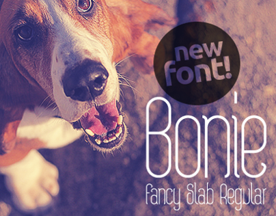 Bonie Fancy Slab Regular