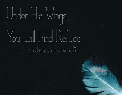 In Him I find Refuge