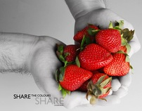 Still Life Photography | Color Splash