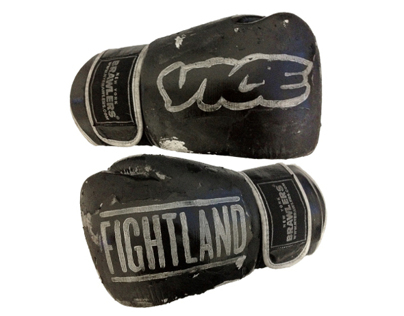 VICE X FIGHTLAND