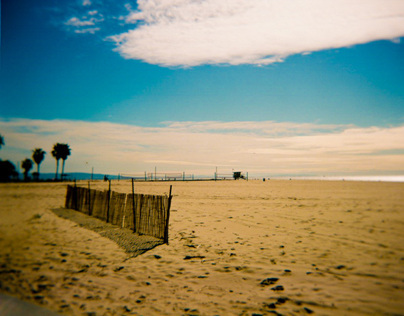 California with Holga 120